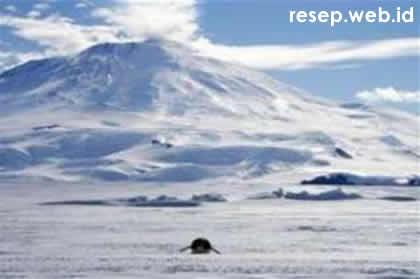 image from http://www.resep.web.id/wp-content/uploads/2008/09/salju_antartika.jpg